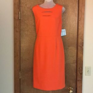 Orange stunner by Kasper NWT